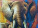 Tablou Elephant