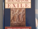 Bound for Exile: Israelites and Judeans Under Imperial Yoke