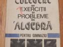 Culegere de exercitii de algebra pt gimnaziu Ivanca Olivotto