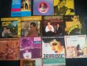 Discuri vinil muzica romaneasca,petrecere,etc. Disc vinyl.