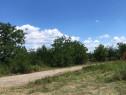 Proprietar 10000m2 teren intravilan in Dumbrava