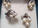 Set argint cu perle și pietre