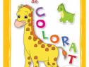 Cartea mea de colorat :Animale