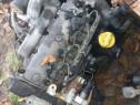 Cod motor F9K 1.9 2006 an de fabricatie