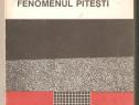 Virgil Ierunca-Fenomenul Pitesti