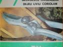 Georgescu Magdalena - Taierea vitei de vie, 1992