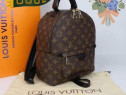 Set Louis Vuitton (adidasi+rucsac)model unisex