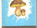 Cunoasteti si valorificati ciupercile