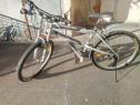 Bicicleta adulți bărbat