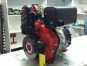 Motor diesel BCS