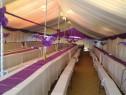Aranjamente pentru corturi de nunti (falduri, drapaje ,huse)