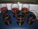 Set 6 Pahare vechi bautura vin, tuica pictate cu flori, star