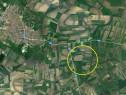 Teren arabil in Salonta 5800mp Sud Est