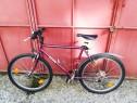 Bicicleta Mountain Bike Ering import Germania