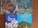 Lot 4 carti despre alpinism si drumetie / R8P1F