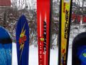 Placa si skiuri