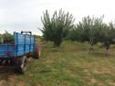Remorca medgidia basculabila, Disc si Tractor