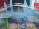 Cușcă hamsteri