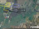 Sanandrei C. Aradului DN 69 teren curti constructii HALE