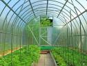 Policarbonat greenhouse special pentru sere si solarii