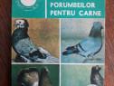 Cresterea porumbeilor pentru carne / R3P2F
