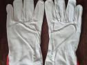 Mănuși de piele mici sau mari