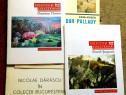 4 Referinte despre Colectii si Colectionari