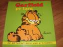 Garfield pe larg ( benzi desenate, format mai mare ) *