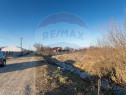 Teren extravilan 3,600mp Satu Mare / Strada Stupilor