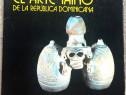 El arte taino de la Republica Dominicana, 1977