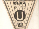 Fanion U Cluj