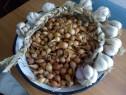 Sămânța de ceapă și usturoi românesc