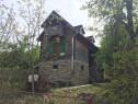 Cabana cu vie in zona de agrement dealul viilor ,ineu j.arad