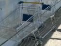 Carucioare supermarket 100l