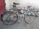 Bicicleta Cursiera Umbertto Dei