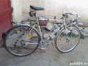 Bicicleta Cursiera Umberto Dei