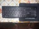 Kit tastatura+mouse wireless Trust Evo Silent, negru