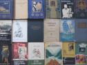 Carti in limba maghiara , peste 400 titluri