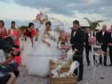 Porumbei nunta Constanta