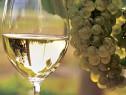 Vin natural