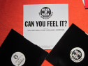 Vinil Reel 2 Real Featuring The Mad Stuntman-Can You Feel It