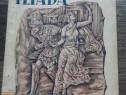 Carte veche iliada gheorghe andreescu