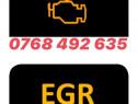 Curatare egr valve egr dpf curat egr diagnoze auto mecanic