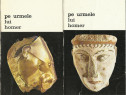 Carte despre descoperirea Troia si Micene orasele din Iliada