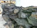 Carbune lignit
