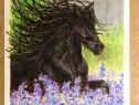Calul,desen in pasteluri uleioase pe A4
