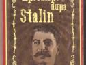 Apocalipsa dupa Stalin-Gica Manole