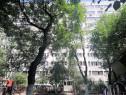 Apartament 2 camere Bd. Camil Ressu / Park Lake, comision 0%