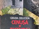 Cenusa*Incendiu intre maslini de Grazia Delidda