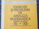 Exerciţii şi Probleme de Analiză Matematică